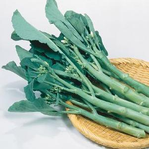 Chinese Broccoli 'Green Lance'