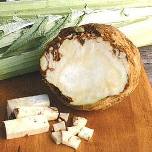 Celeriac 'Brilliant'