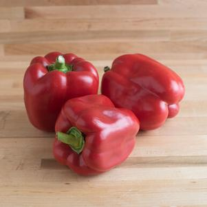 Pepper 'North Star'
